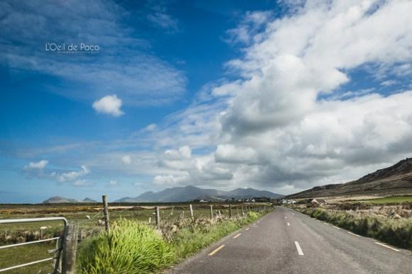 L'Oeil de Paco - Peninsule de Dingle - Irlande (122)