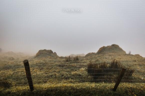 L'Oeil de Paco - Peninsule de Dingle - Irlande (36)