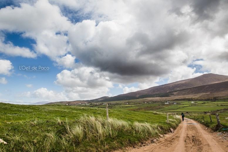L'Oeil de Paco - Peninsule de Dingle - Irlande (96)