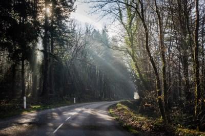 L'Oeil de Paco - Monts d'Arrée 2019 (1)
