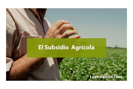 El subsidio agricola