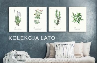 Internetowy Sklep Z Plakatami Loft Poster Design