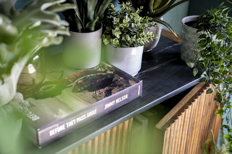 Planten in je interieur