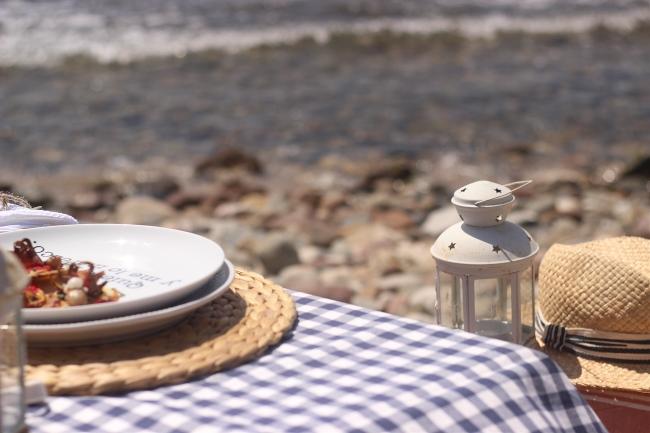 Unas tapas de sardinas y pulpitos en la playa