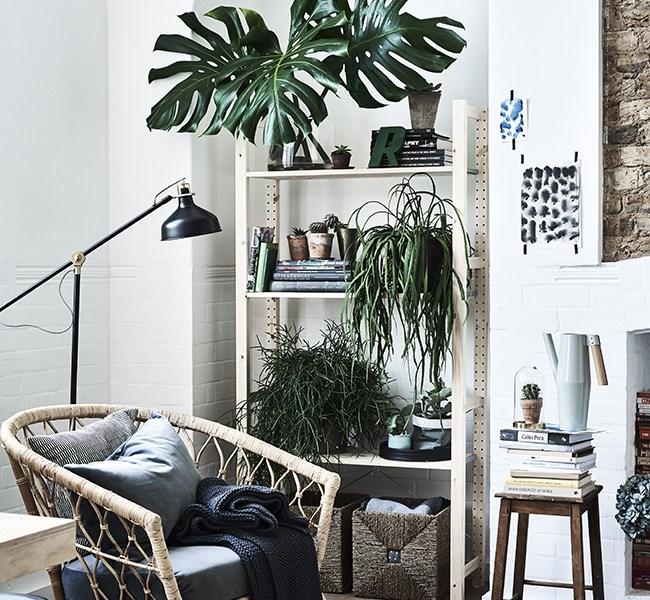 CÓMO DECORAR CON PLANTAS Y CON IKEA