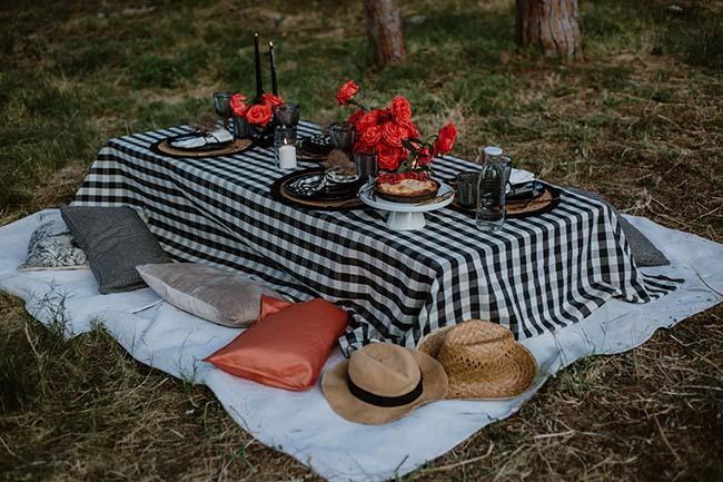 Vichy Rose: un picnic de lo más elegante