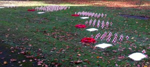 field of remembrance 2