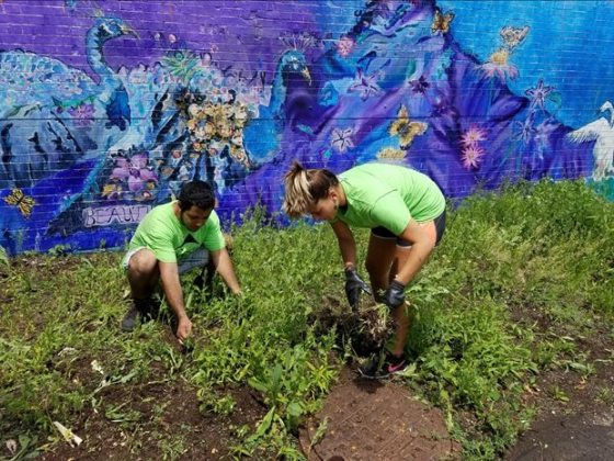 Youth Gardeners Clean Up Logan Square Monument