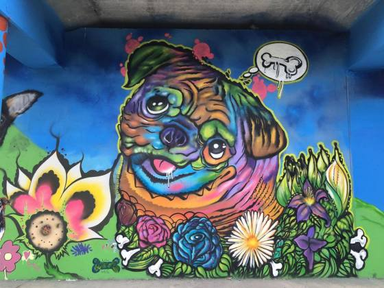 Logan Square Dog Park Celebrates One-Year Anniversary With Picnic and Mural