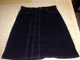 rtw aline denim skirt