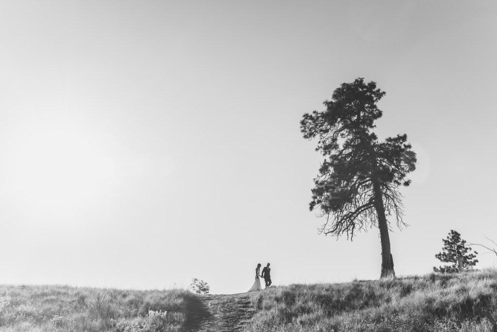summerhill-kelowna-wedding-photography_ls8678