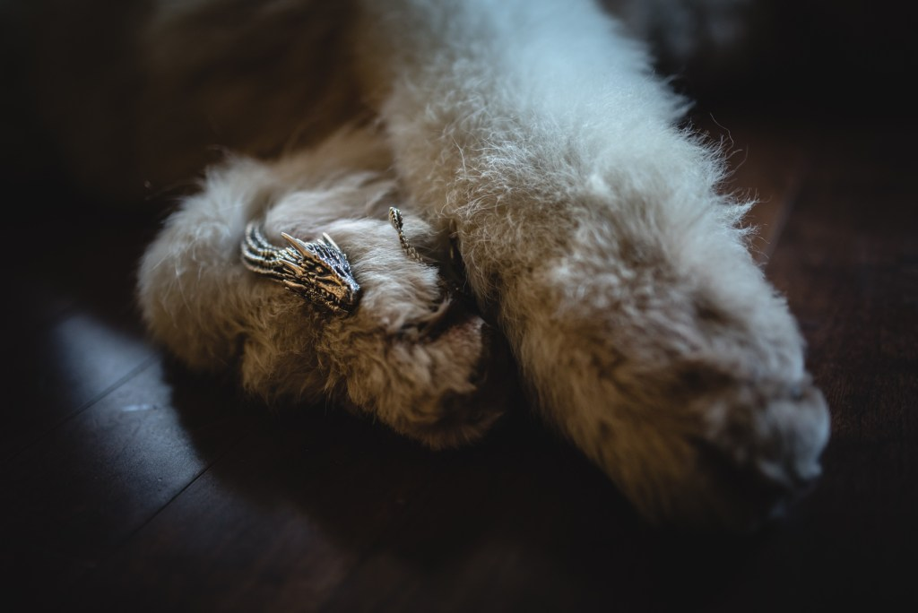whistler-wedding-photography-paw_LS