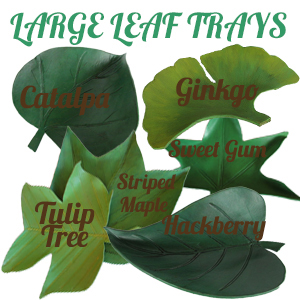 Large Leaf Trays