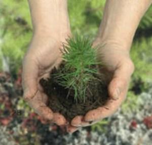 duurzaam-duurzaam-bouwen