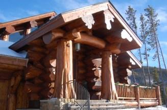 massive logs