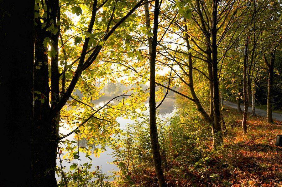 Autumn Cabin Holidays