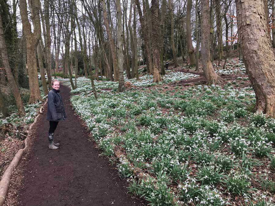 Days Out In Feb Cotswolds