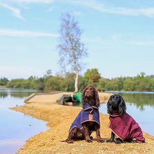 Pet Friendly Log Cabin Holidays