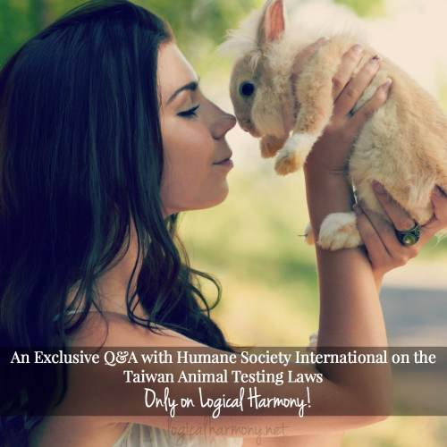 An Exclusive Q&A with Humane Society International on the Taiwan Animal Testing Laws