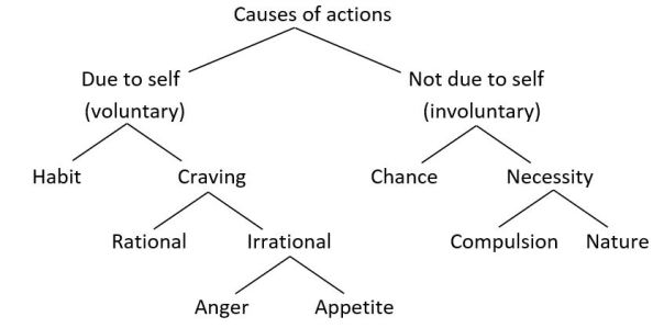 Causes of actions chart
