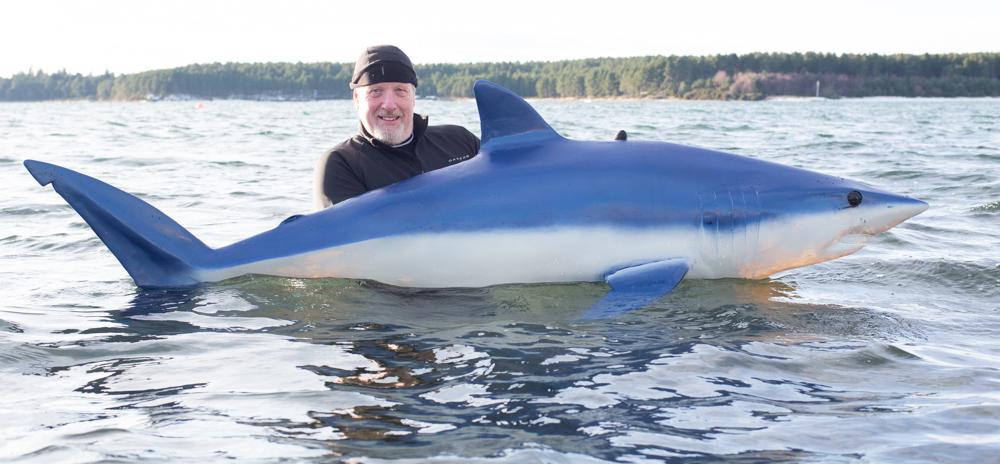 Scott Gleed - Shark