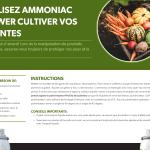 Recette ammoniac pour plantes