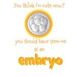 Cute IVF Embryo