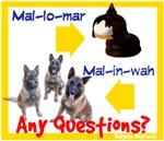 Malinois / Mallomar