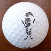 Mattapoisett Bay Club Golf Course