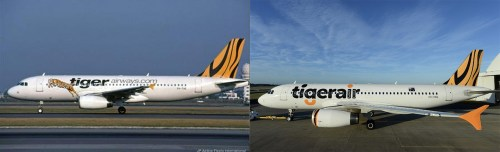 Logo_Tiger_Air