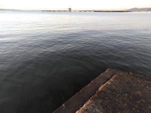 20190112_須磨浦海岸突堤先端より西の景色
