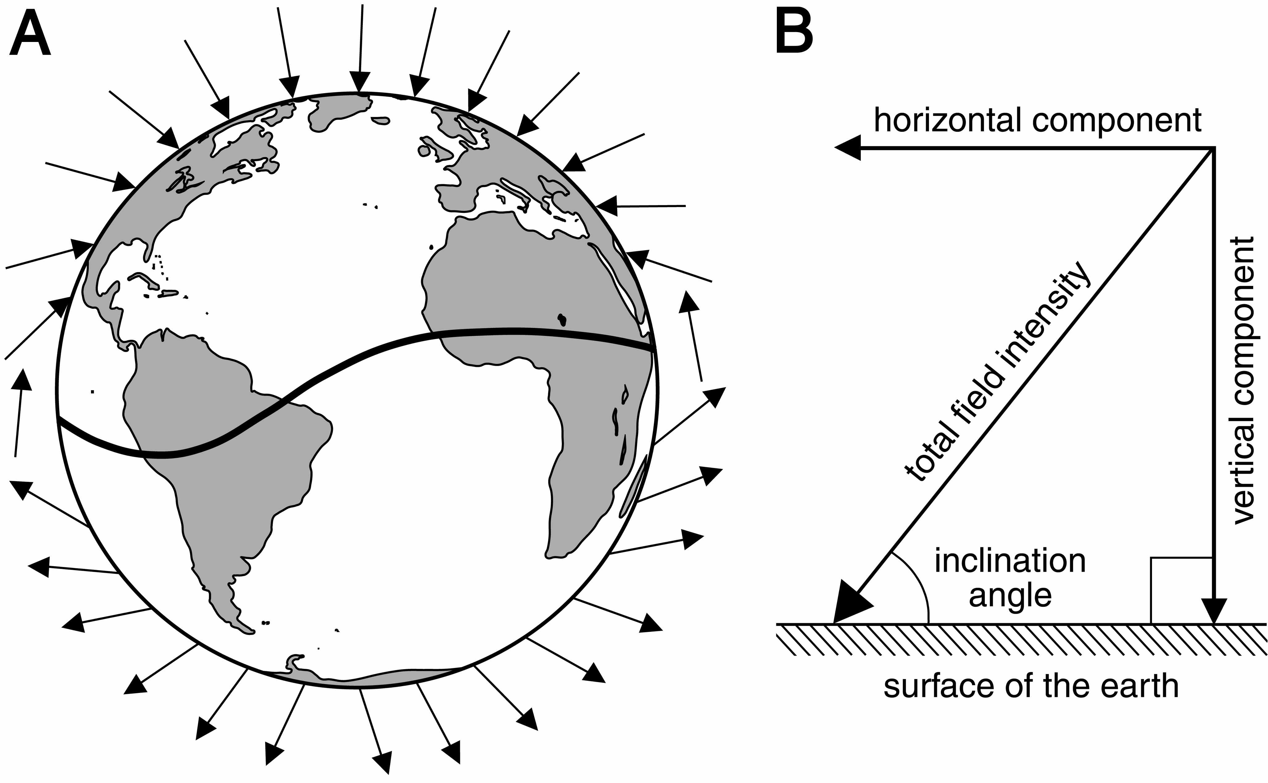 Geomagnetic Imprinting And Natal Homing In Sea Turtles And