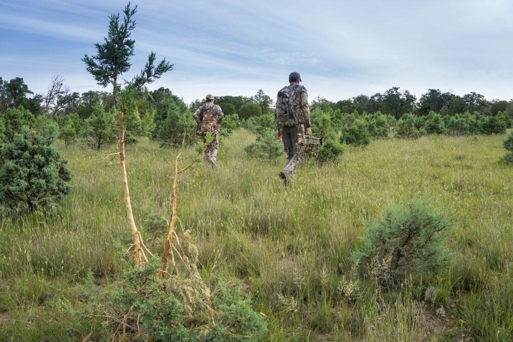Elk Hunt Search