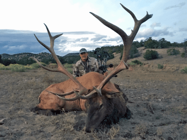 New Mexico Bull Elk - LOH Outfitters
