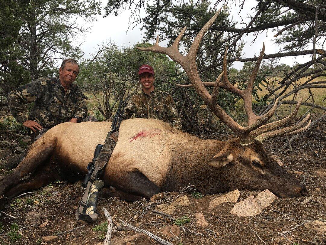 Oryx hunting