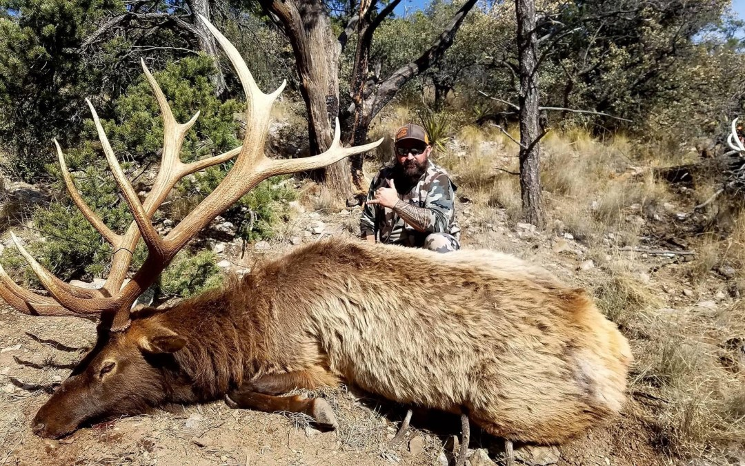 Elk Hunting in New Mexico Unit 17