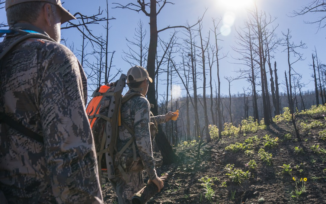Selecting an Elk Hunting Outfitter