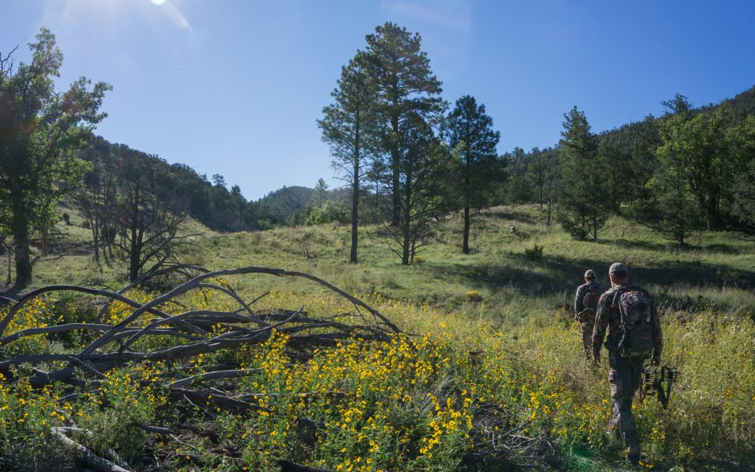 Working for Elk Hunting Success