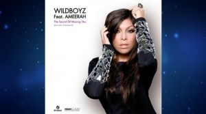 Wildboyz ft. Ameerah - The Sound Of Missing You (Version Française)