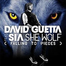 David Guetta feat Sia - She Wolf (Falling To Piece)