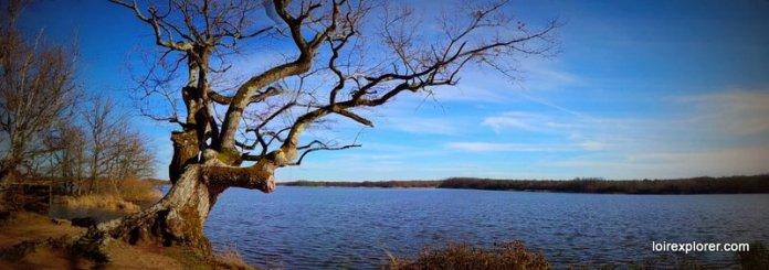 vacances de février en région centre Parc Naturel de la Brenne à visiter