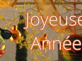 bonnes résolutions nouvel an