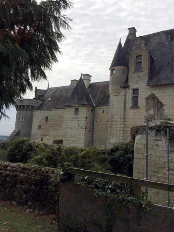 Le château de Palluau-Frontenac, découvrez des fresques magnifiques