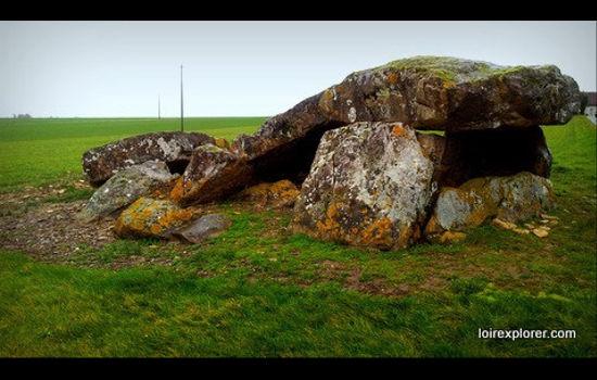 Dolmen de la Pierre levée à Liniez mégalithe menhir néolithique préhistoire région Centre Indre