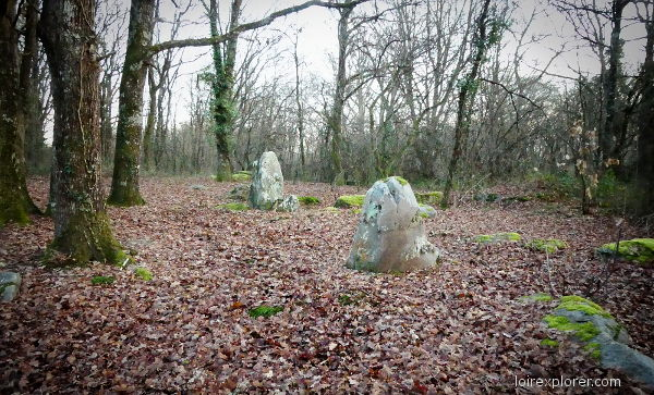 Menhirs de Tréfoux Bagneux mégalithe dolmen néolithique préhistoire région Centre Indre