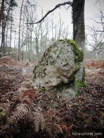 dolmens et menhirs en région Centre Pierre Frite de Grandmont Noyers sur Cher tombe néolithique préhistoire Loir et Cher mégalithe menhir néolithique préhistoire Indre