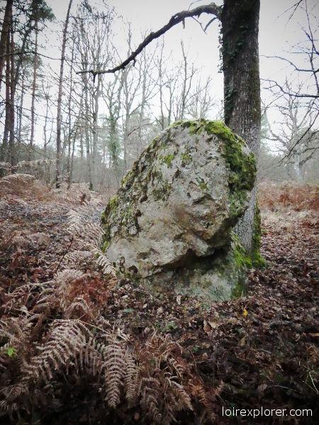 Pierre Frite de Grandmont Noyers sur Cher mégalithe dolmen néolithique préhistoire région Centre