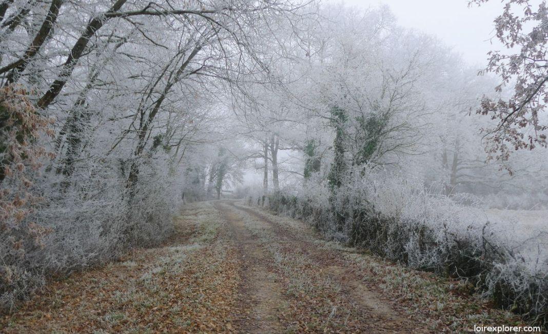 Que faire quand il neige ? Guide pratique insolite
