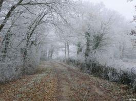 que faire quand il neige Paysage givré à Reugny en Indre et Loire 37