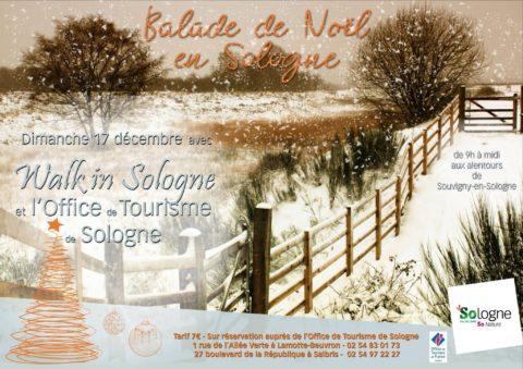Balade de Noël en Sologne